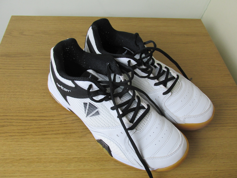 This image has an empty alt attribute; its file name is carlton-trainers.jpg